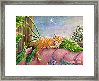 Marmalade Framed Print by Dee Davis