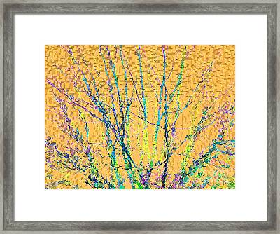 Marmalade Sky Framed Print by Ann Johndro-Collins