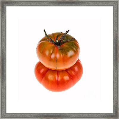 Marmande Tomatoes Framed Print by Jane Rix