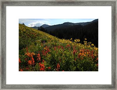 Maroon Bells Wilderness Framed Print