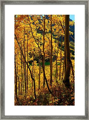 Maroon Lake Gold Framed Print by Jeremy Rhoades