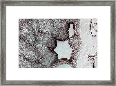 Mars' Polar Cap Framed Print by Nasa/jpl-caltech/univ. Of Arizona