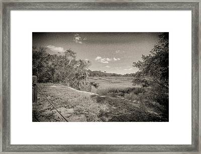 Marsh 2 Framed Print