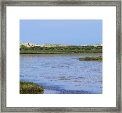 Marsh At Bodie 2 Framed Print by Cathy Lindsey