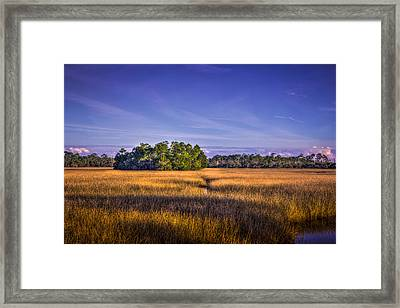 Marsh Hammock Framed Print by Marvin Spates