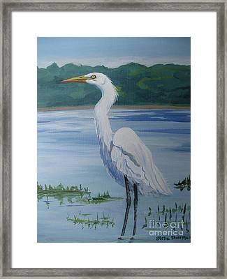 Marsh Land Egret Framed Print
