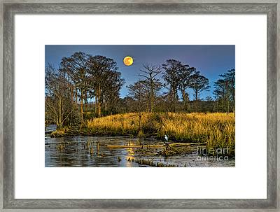 Pawleys Island Marsh Moon Framed Print