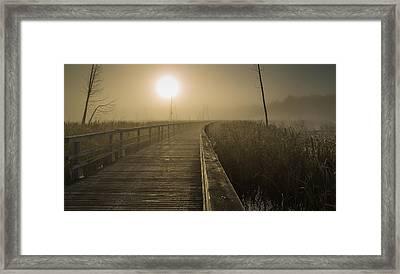 Marsh Morning Framed Print