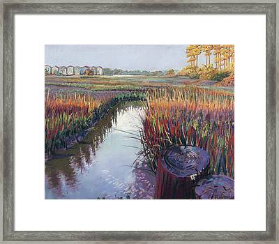 Marsh View Framed Print by David Randall