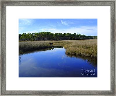 Marsh Water Creek Framed Print by Lew Davis