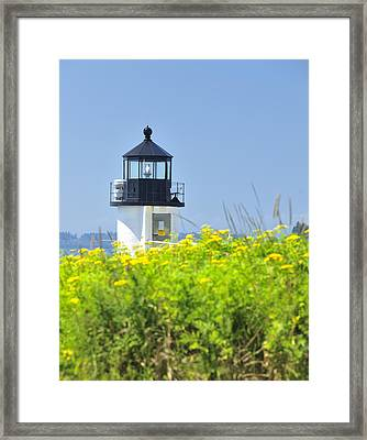 Marshall Point Lighthouse And Field Of Goldenrod  Framed Print by Marianne Campolongo