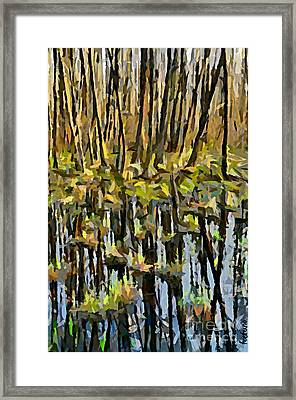 Marshes Framed Print by Dragica  Micki Fortuna