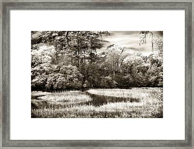 Marshes Framed Print by John Rizzuto