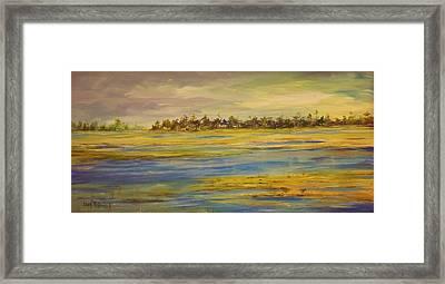 Marshland Jackson County Framed Print by John McDonald