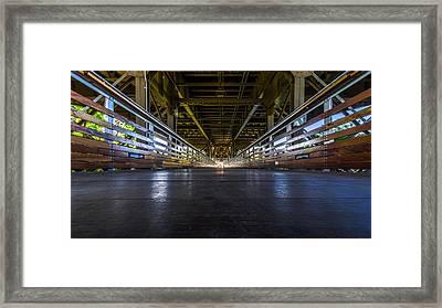 Marsupial's Eye View Framed Print by Randy Scherkenbach
