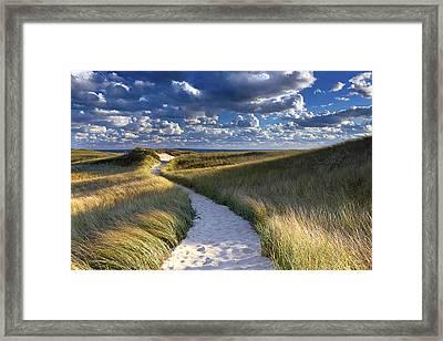 Martha's Vineyard Beach Path Framed Print by Katherine Gendreau
