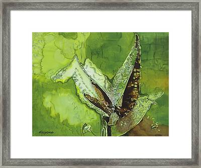 Martian Maize Framed Print