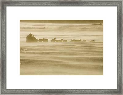 Martin Buser Runs On The Yukon River On Framed Print by Jeff Schultz