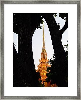 Maru From My Shot Framed Print