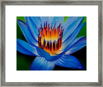 Marvel Framed Print by Laura Bell