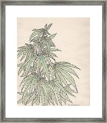 Maryjane Framed Print