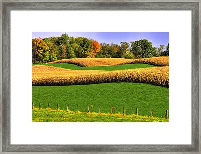 Maryland Country Roads - Swales Framed Print by Michael Mazaika