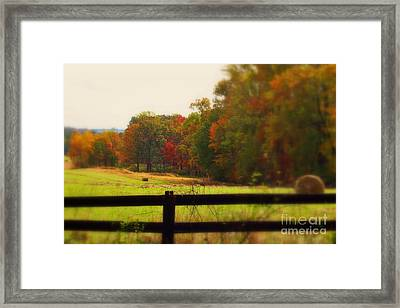 Maryland Countryside Framed Print by Patti Whitten