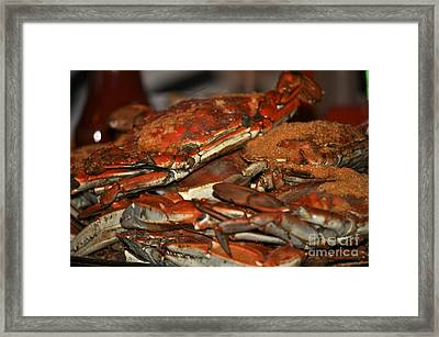 Maryland Crabs Framed Print