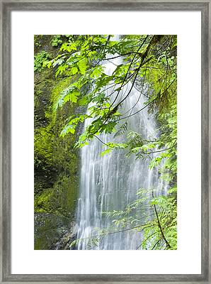 Marymere Falls, Olympic National Park Framed Print by Josh McCulloch Photography