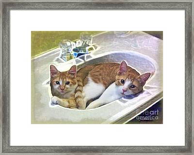Mary's Cats Framed Print by Joan  Minchak
