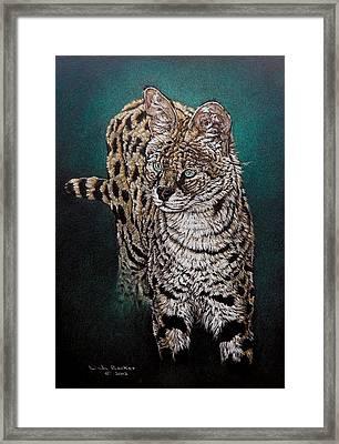Masaai Framed Print by Linda Becker