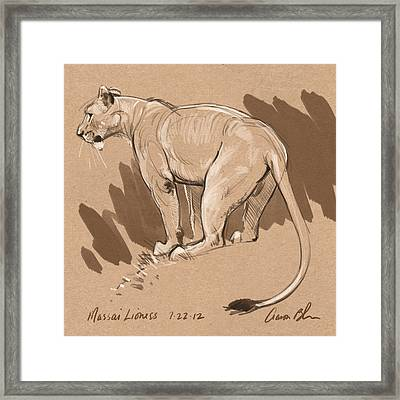 Masai Lioness Framed Print by Aaron Blaise