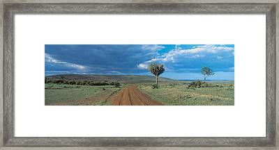 Masai Mara Game Reserve Kenya Framed Print by Panoramic Images