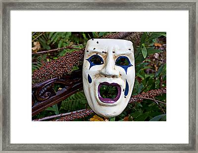 Mask And Ladybugs Framed Print by Garry Gay