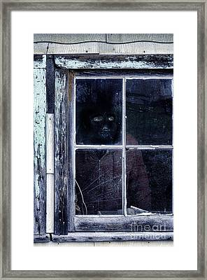 Masked Man Looking Out Window Framed Print