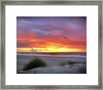 Framed Print featuring the photograph Masonboro Inlet Sunrise by Phil Mancuso