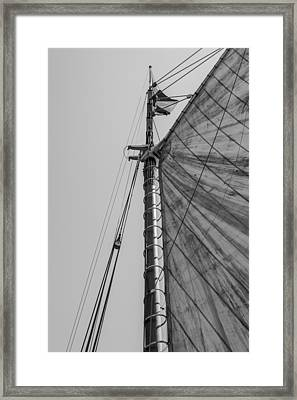 Mast And Sail II Framed Print by Marco Oliveira