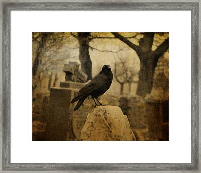Master Framed Print by Gothicrow Images