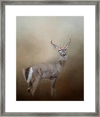 Master Of The Forest Framed Print