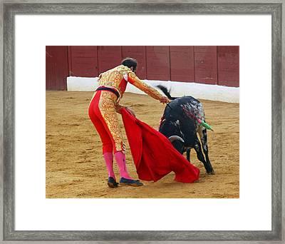 Matador Stabbing Bull Framed Print by Dave Dos Santos