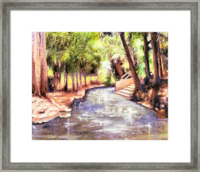 Mataranka Hot Springs Framed Print