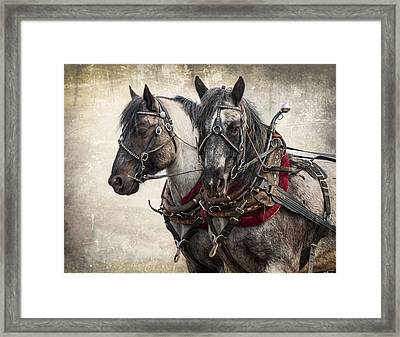 Matched Pair Framed Print