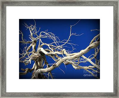 Material For A Witches Broom Framed Print