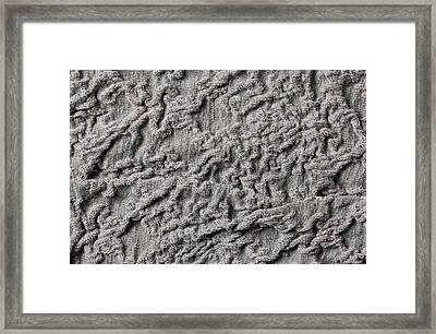 Material Texture Framed Print by Tom Gowanlock