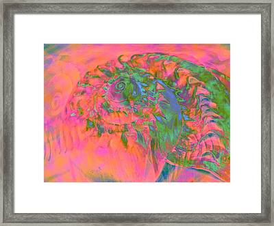 Materialization Of A Shell Framed Print