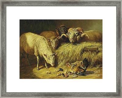 Maternal Solicitude Framed Print by Pg Reproductions