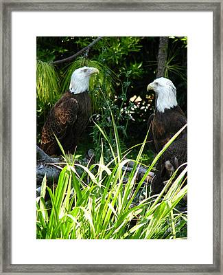 Framed Print featuring the photograph Mates by Greg Patzer