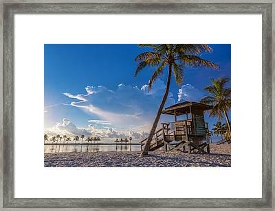 Matheson Hammock Park Atoll Framed Print