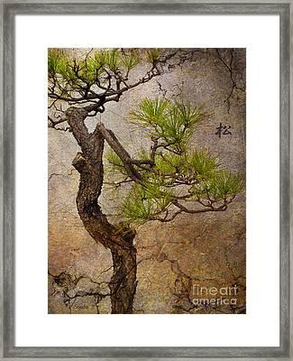 Matsu Framed Print