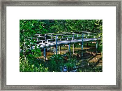 Matthaei Botanical Gardens Framed Print by Pat Cook